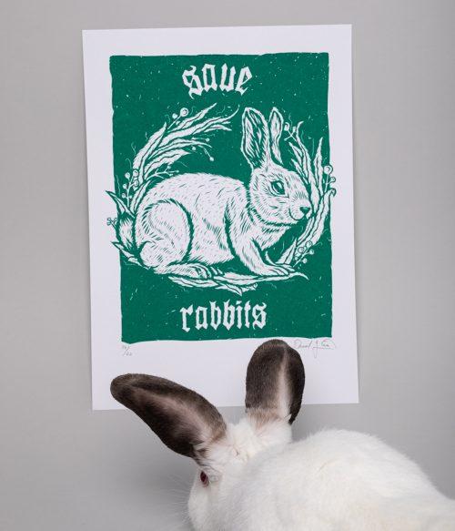 Save Rabbits