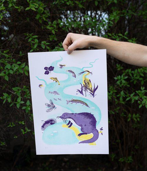 Živočíchy našich vôd risografika