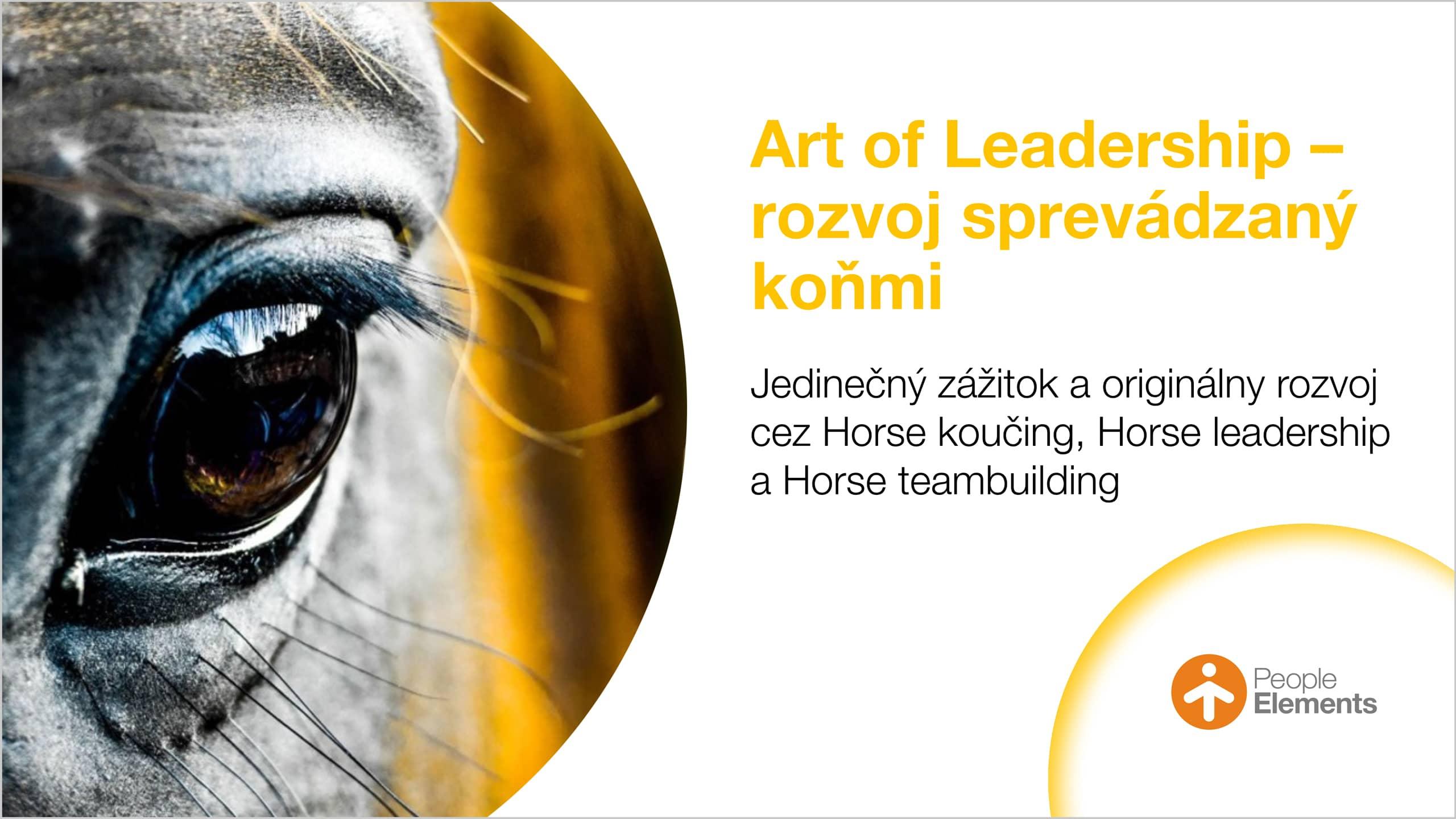 pe-banner-novinky-horse-programy-1920x1080@2x-c